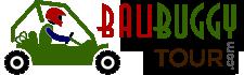 BaliBuggyTour.com