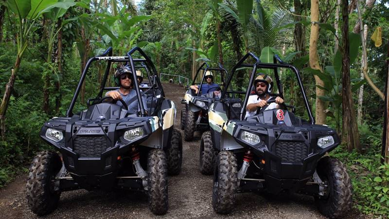 Mason Jungle Buggies is one of the adventure from Mason company
